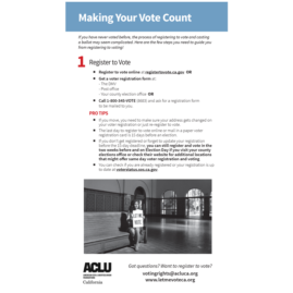 Power of Voting Brochure Insert