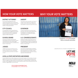 Power of Voting Brochure