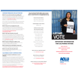 Voter Protection Brochure